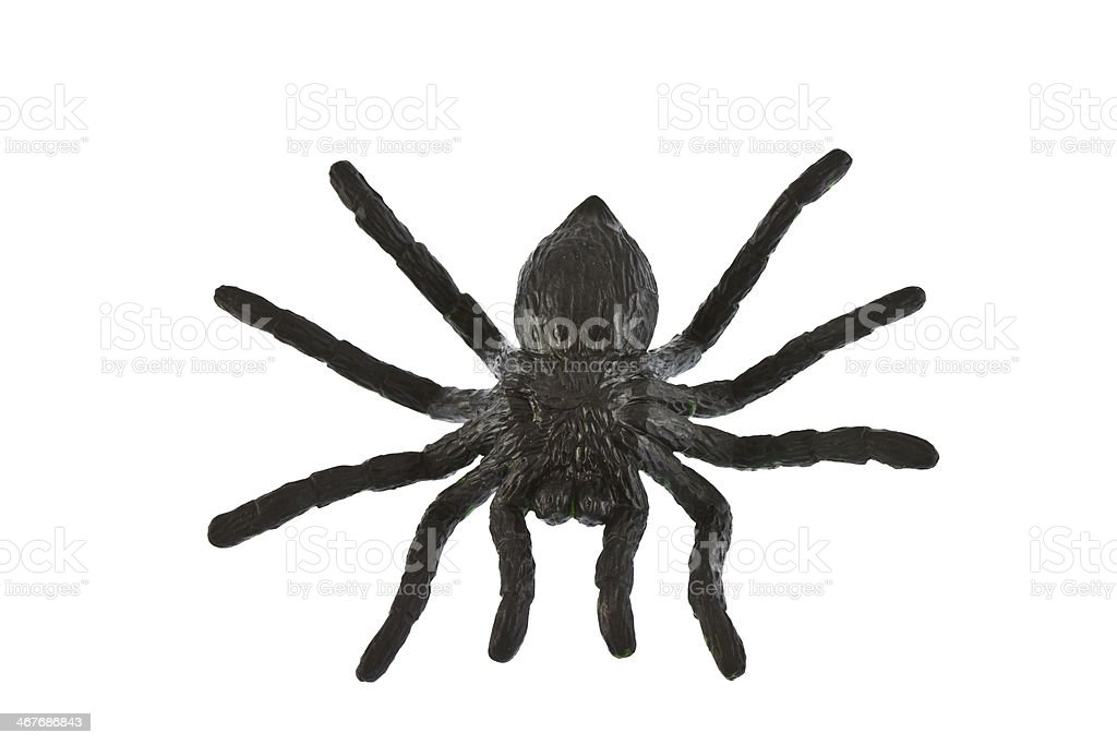 Plastic spider on white background stock photo