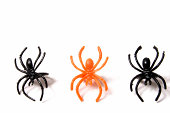 Halloween spider rings.