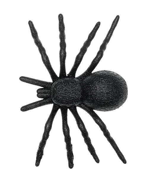plastic toy spider - araignée photos et images de collection