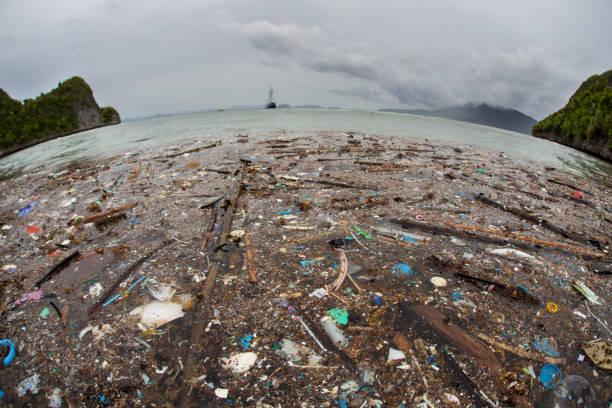 plastic trash in tropical pacific ocean - oceano pacífico imagens e fotografias de stock