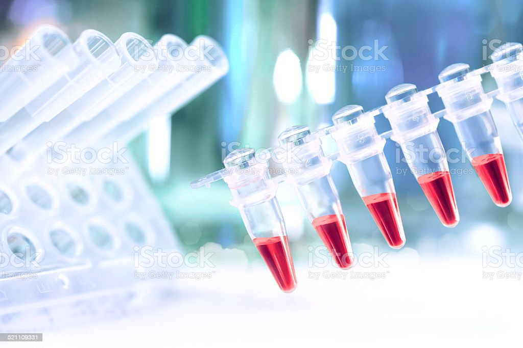 Plastic tubes prepared for amplification of DNA stock photo