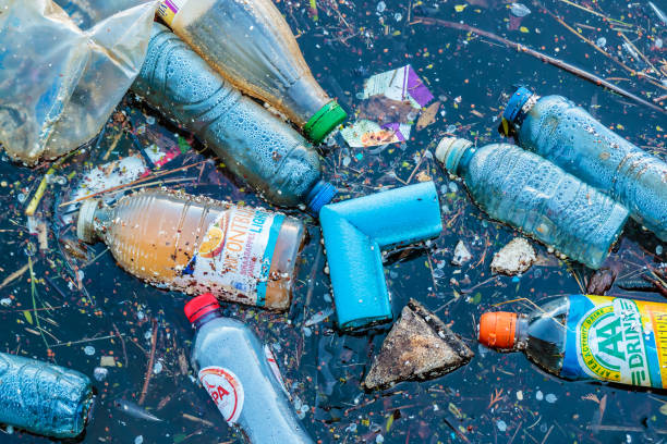 Plastic waste floating in a canal in Amsterdam, The Netherlands stock photo