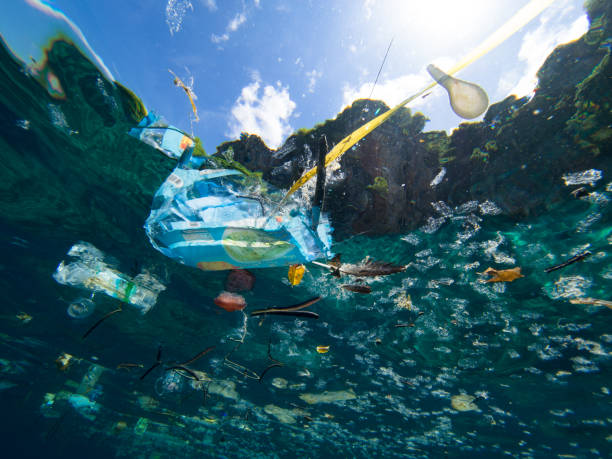 plastic waste - sea stock pictures, royalty-free photos & images