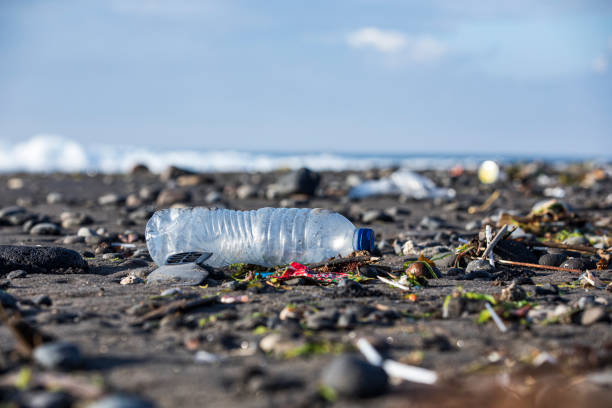 Plastic Water Bottle amongst trash on the beach stock photo