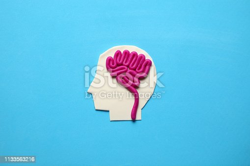 585087100 istock photo Plasticine head and brain inside. Mental activity, psychology concept 1133563216