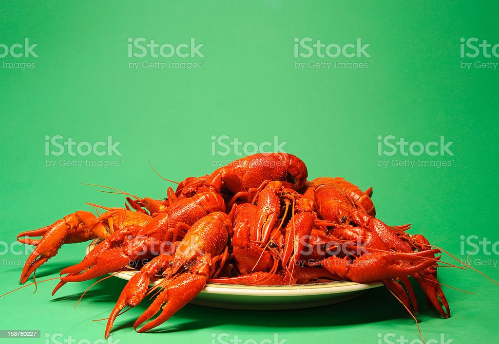 Plate full of crayfishes stock photo