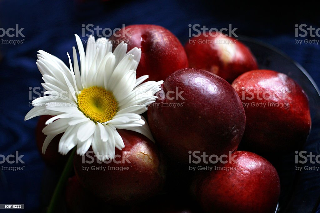 Plate full of fruits stock photo