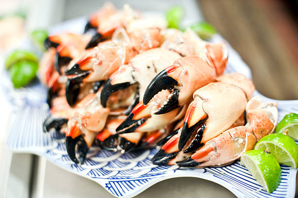 Plate full of Stone Crab  claw stock pictures, royalty-free photos & images