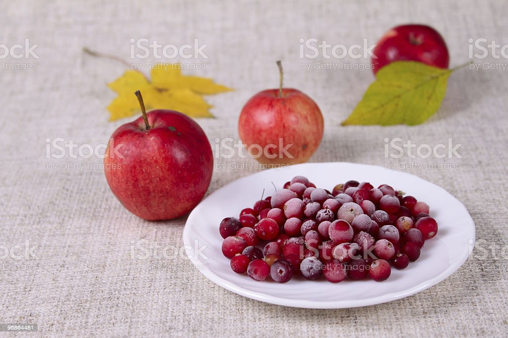 Plate of a cowberry sprinkled with sugar royalty-free stock photo