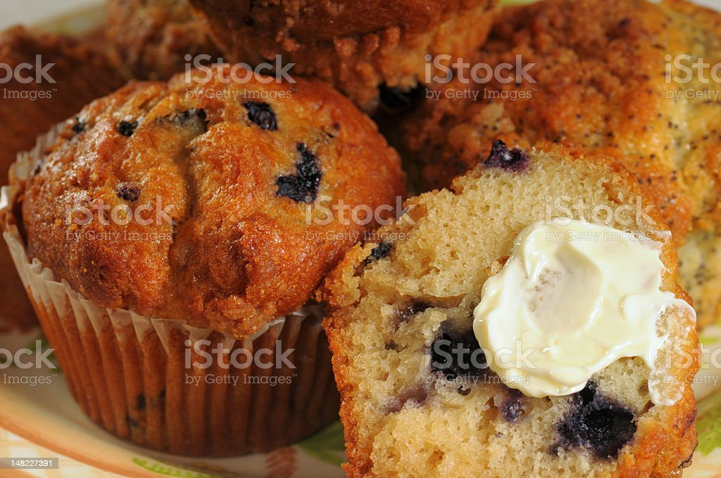 Plate of muffins royalty-free stock photo