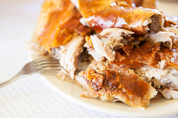 Plate of roasted Pork cut in pieces with skin – Foto