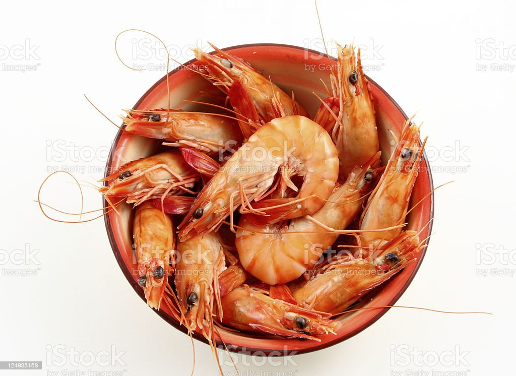 Plate of shrimps royalty-free stock photo