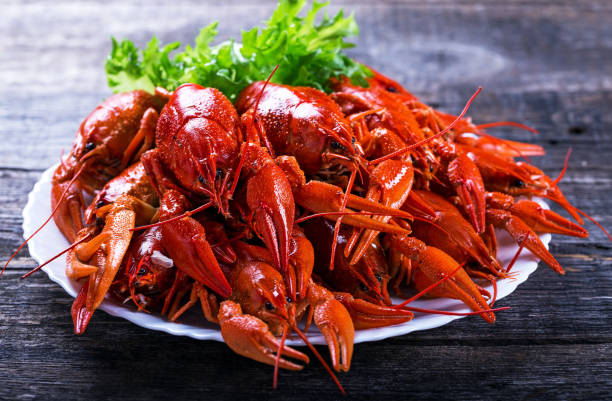 Plate of tasty boiled crayfish stock photo