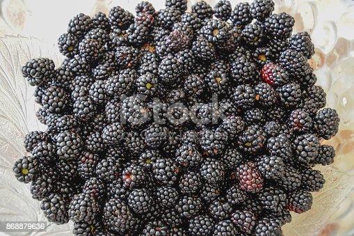 502634476istockphoto Plate with berries black blackberries 868879636