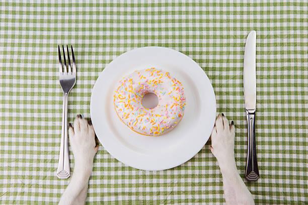 piatto con ciambella con smalto multicolore. - sugar cane foto e immagini stock