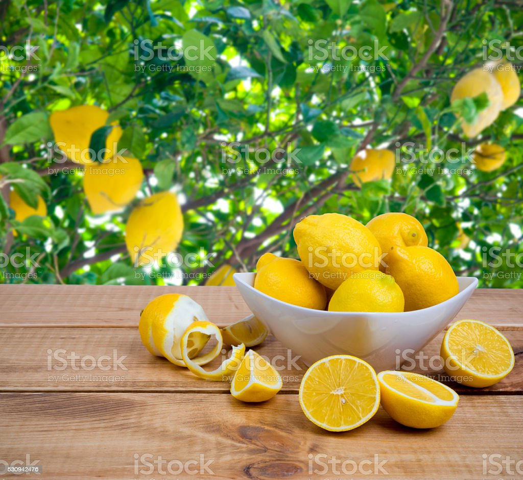 Plate with lemons on wooden table over fruit tree background stock photo