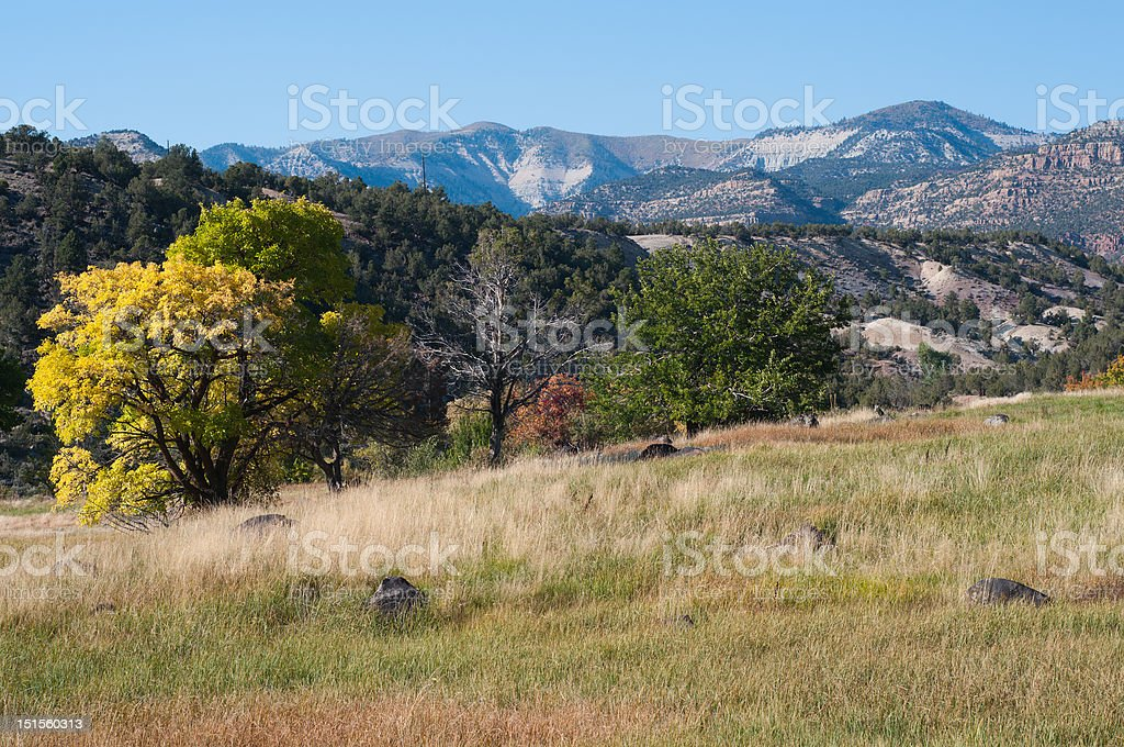 Plateau Creek Valley stock photo