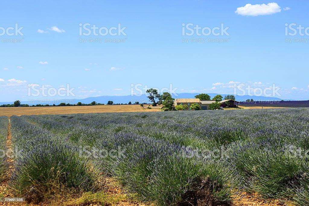 쁠라또 드 발렝솔 (Provence), 클린싱 royalty-free 스톡 사진