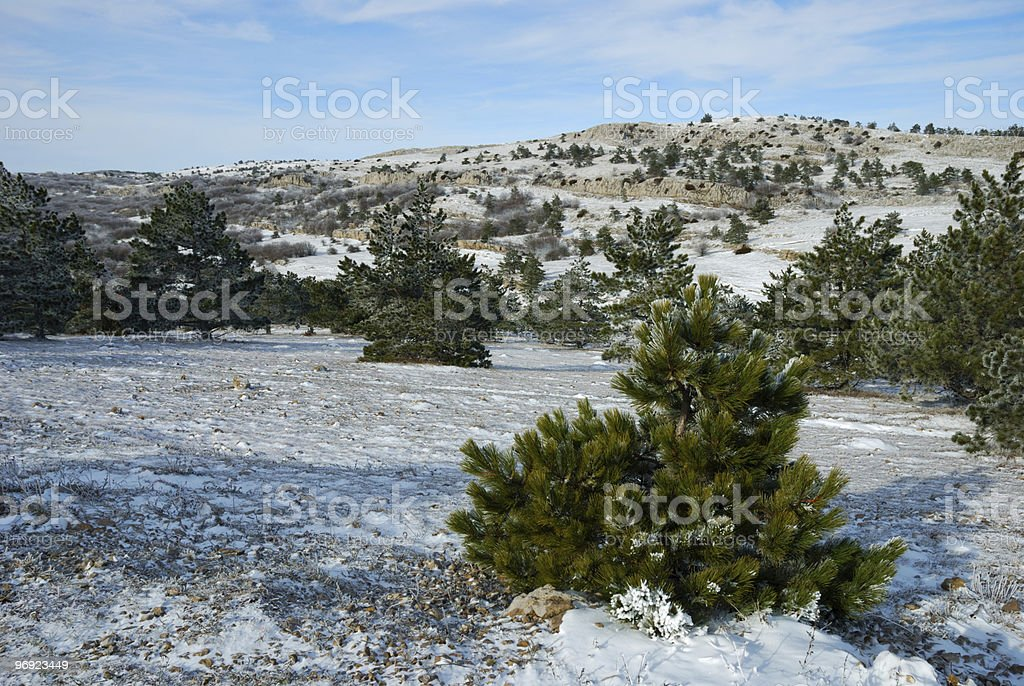 Plateau in mountains royalty-free stock photo