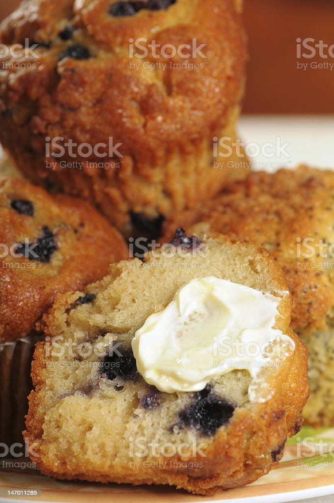 Plateful of muffins royalty-free stock photo