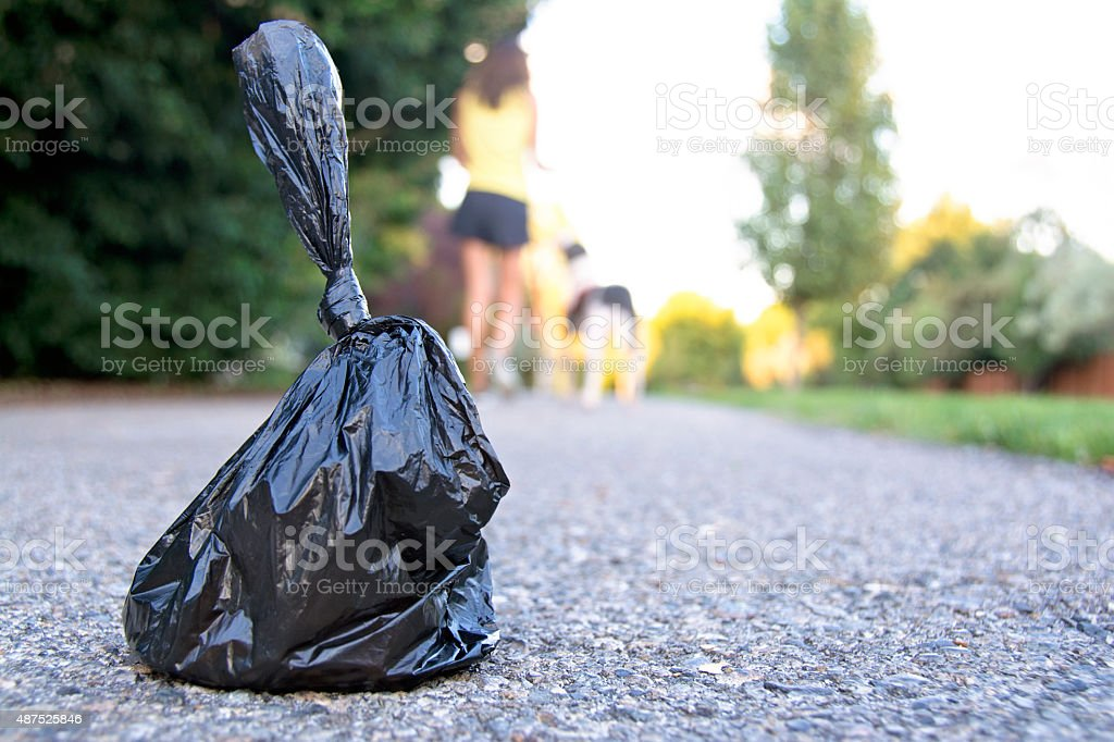 Platic Bag with Dog Pooh stock photo