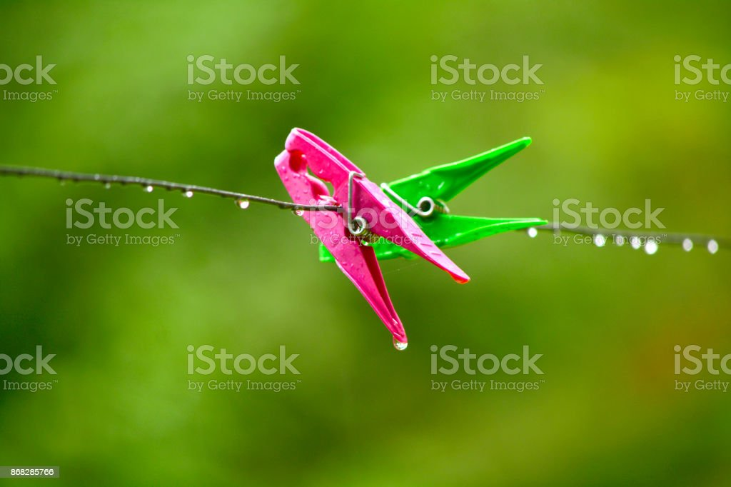 Platic clothespins in nature stock photo
