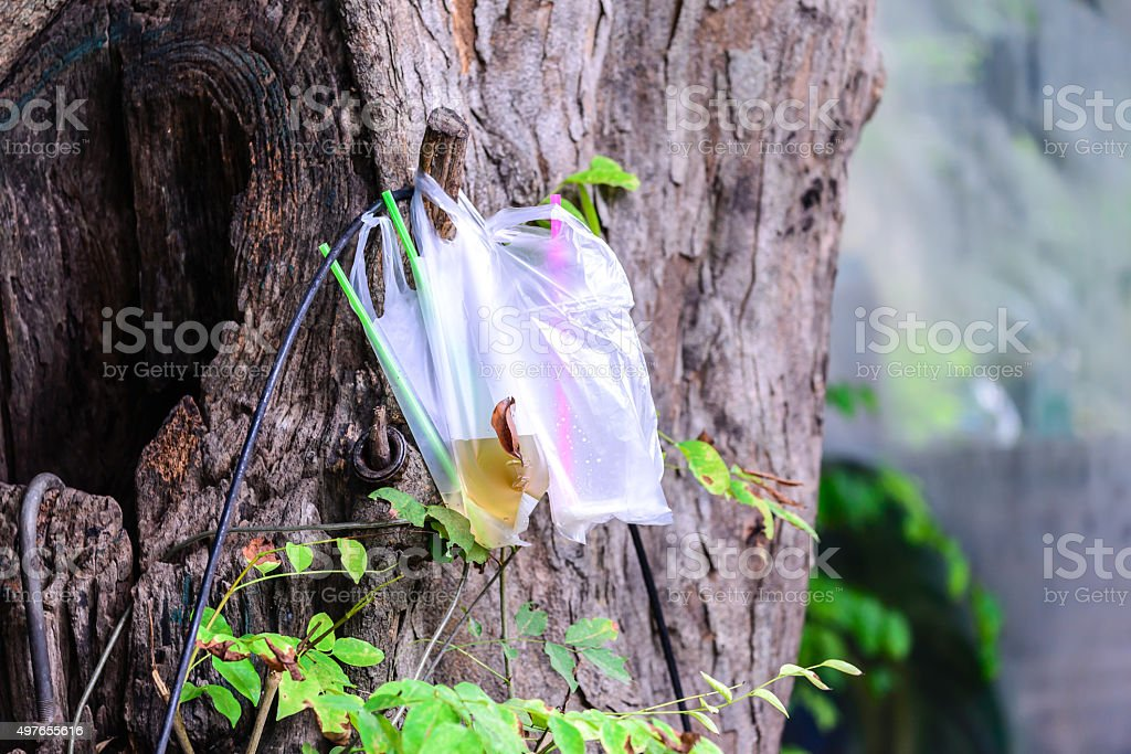 Platic garbage, bag used for sparkling water left on tree. stock photo
