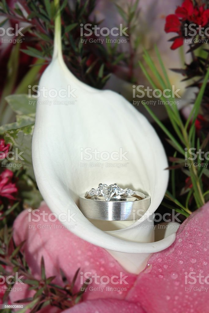 Platinum and diamond wedding ring set in a white Lilly stock photo