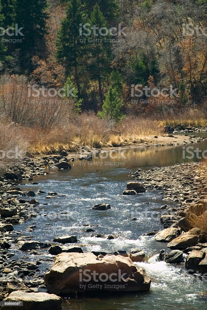 Fiume Platte in Colorado foto stock royalty-free