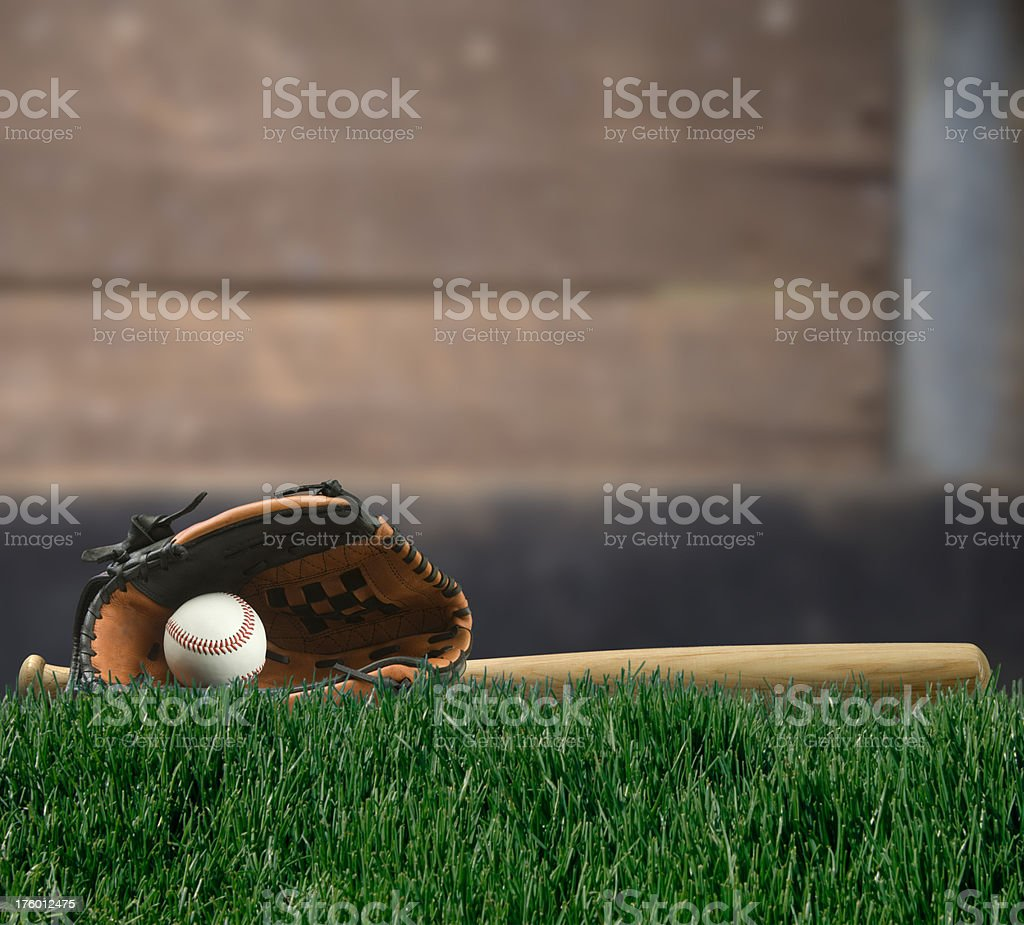 Play Ball royalty-free stock photo