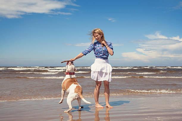Play on beach picture id502621059?b=1&k=6&m=502621059&s=612x612&w=0&h=pdbpnqnbhvwqk phfu21garfajmjuxehtwyyhrt7jxo=