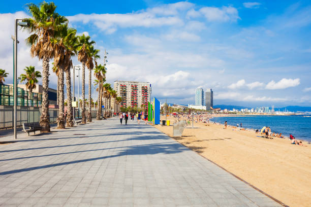 Playa Barceloneta city beach, Barcelona Playa de la Barceloneta city beach in the centre of Barcelona city, Catalonia region of Spain barcelona spain stock pictures, royalty-free photos & images