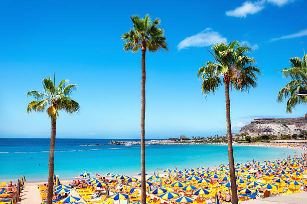 Playa de Amadores playa. Gran Canaria. España - foto de stock