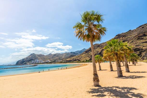 playa de las teresitas, teneriffa - spain solar bildbanksfoton och bilder