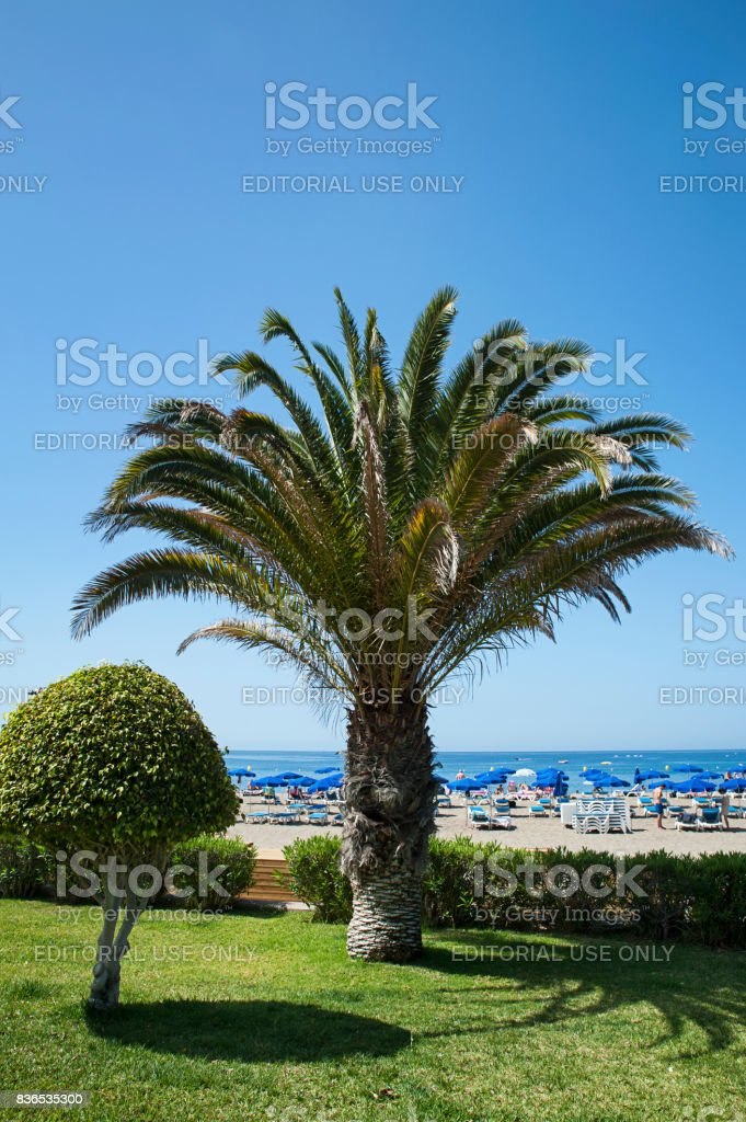 Playa de Las Vistas, views from the freshly cut loand in front of it, in Los Cristianos resort, Tenerife, Canary Islands stock photo