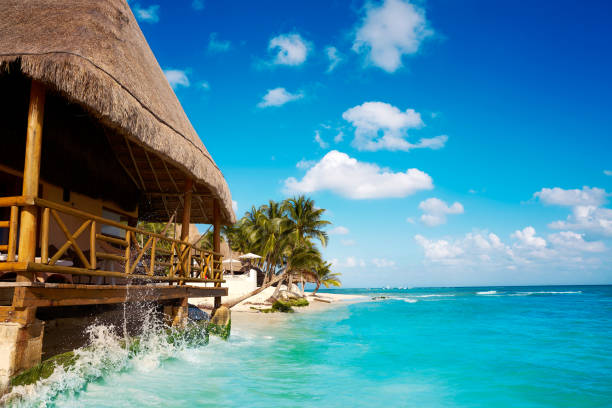 playa del carmen beach palapa in mexico - playa del carmen stock photos and pictures