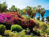 Playa Jardin beach on Tenerife Island in Spain