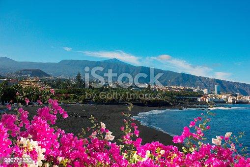 istock playa Jardin, Puerto Cruz, Tenerife, Spain 986772330