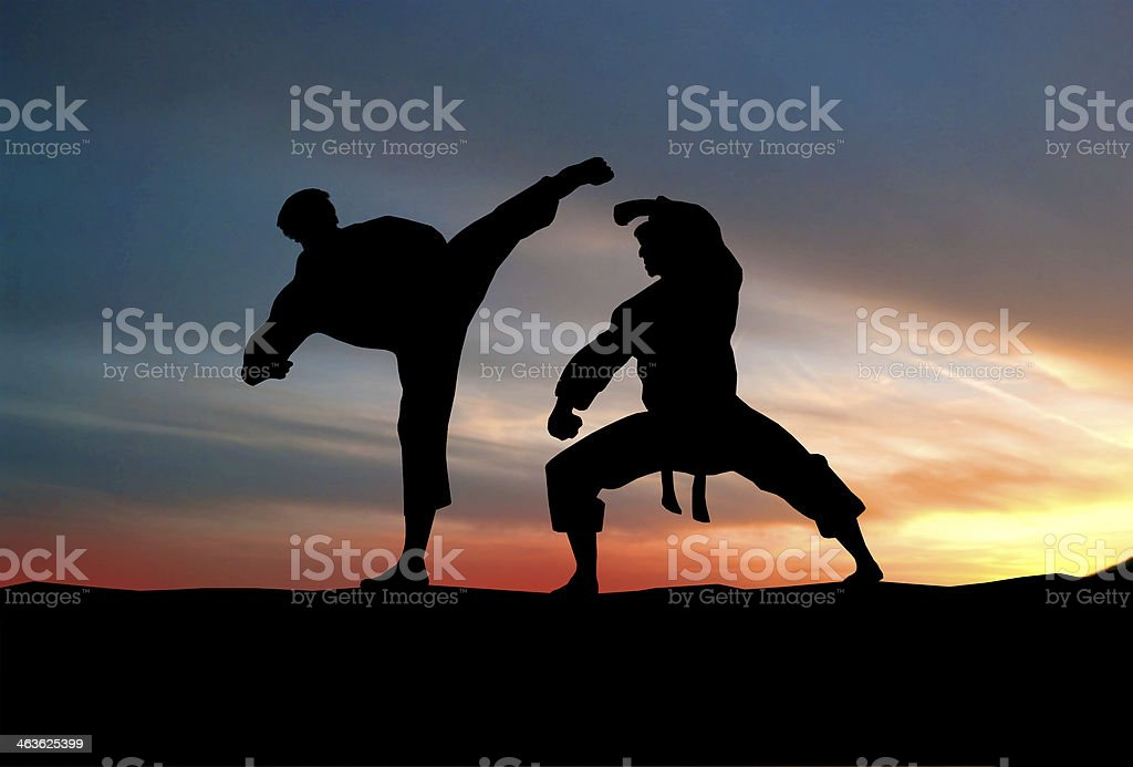 Players fight against the sky. Karate. stock photo