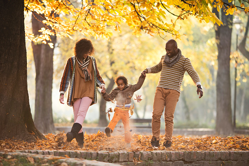 Playful African American family walking through leaves in nature.