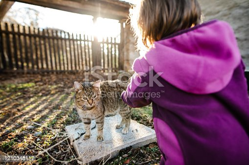 Charming little girl playing with her kitten in her backyard
