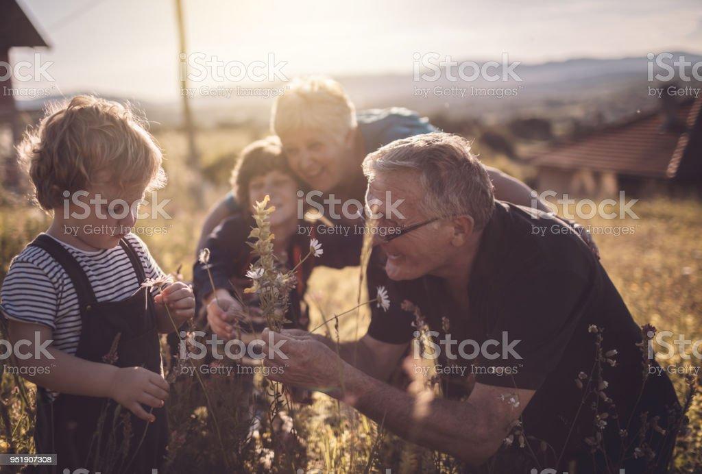 Verspielte Tag bei den Großeltern – Foto