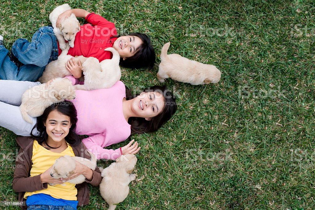 Playful kids whit their puppies royalty-free stock photo