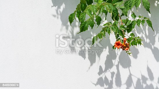 istock Playful light and shadow on a white background in HD ratio 16x9 846936674