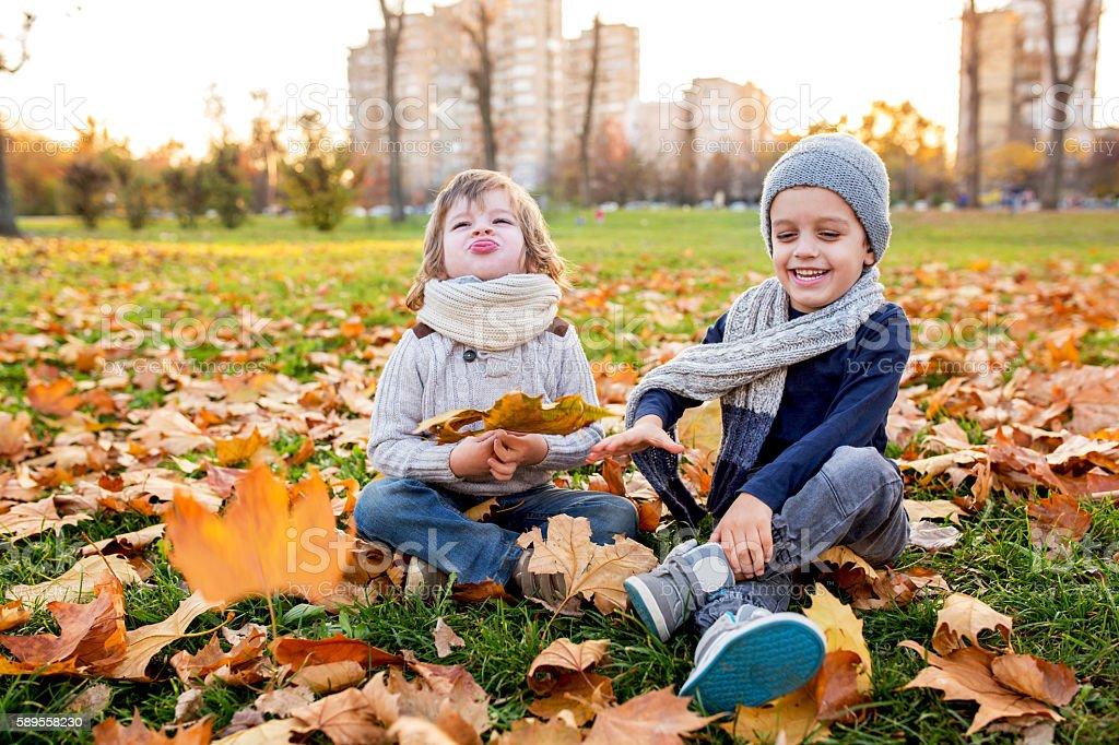 Playful little boys having fun in autumn park. stock photo