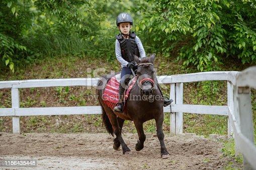 Playful little jockey boy riding adorable pony at sunny day on ranch.