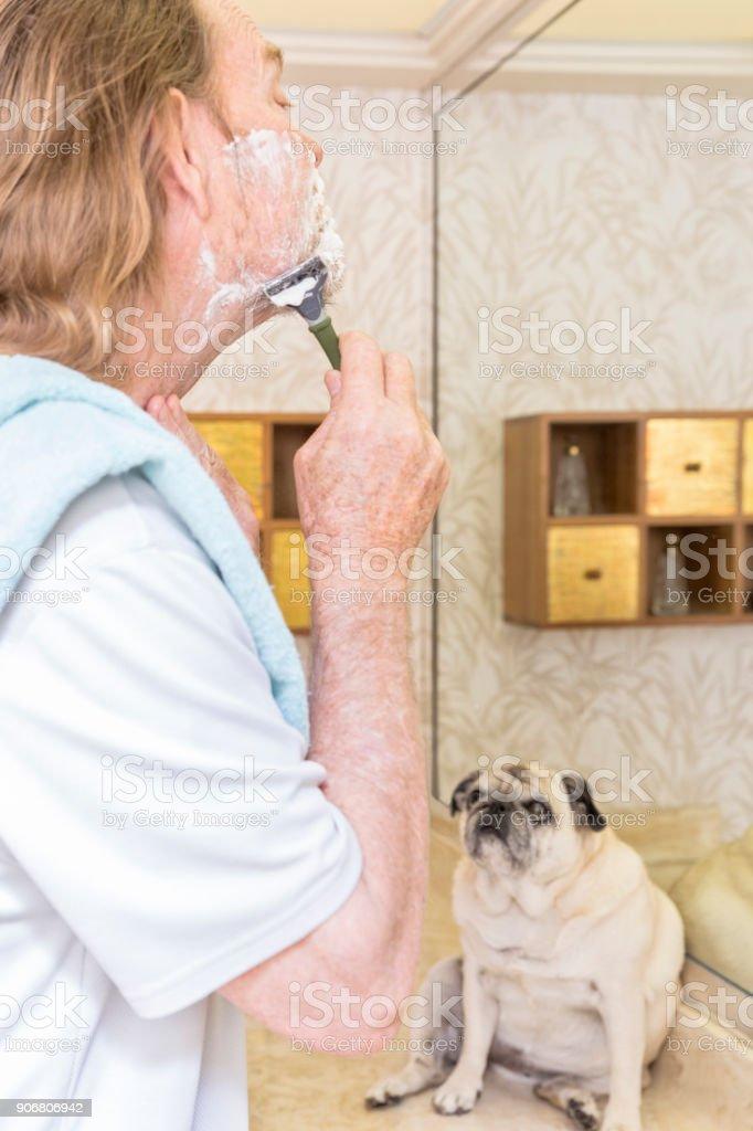 Playful Pets stock photo
