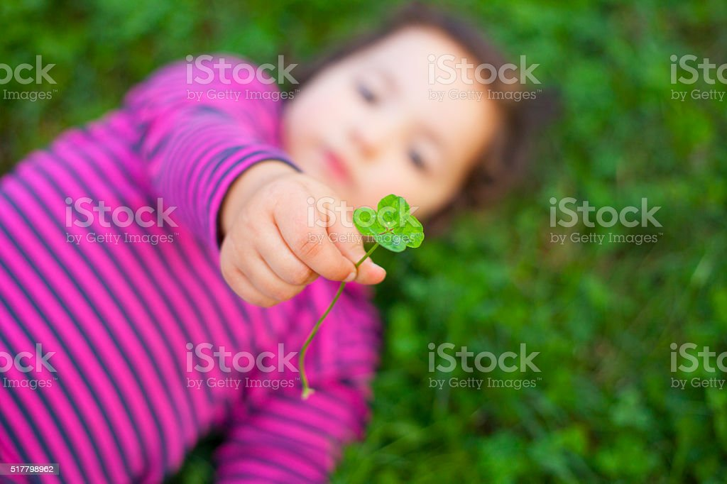 playing at grass meadow with clovers stock photo