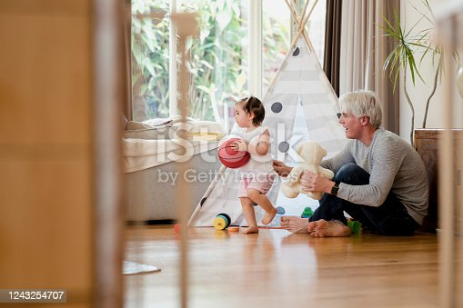 1082195070 istock photo Playing at Home 1243254707