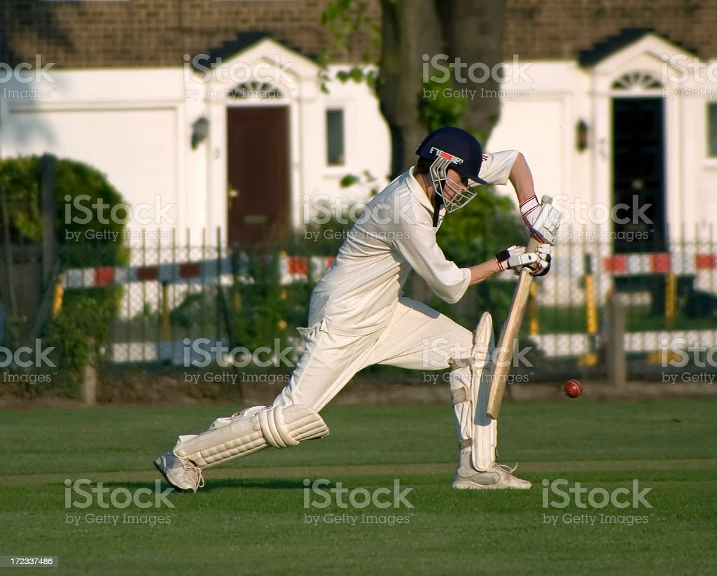 Playing cricket royalty-free stock photo